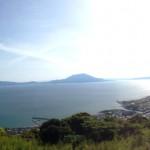鹿児島も初夏の季節です