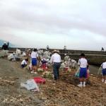 錦江湾クリーンアップ作戦が開催されます!
