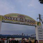 第37回 いぶすき菜の花マラソン