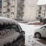 今年の冬は