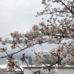 平成最後!4月全体ミーティング