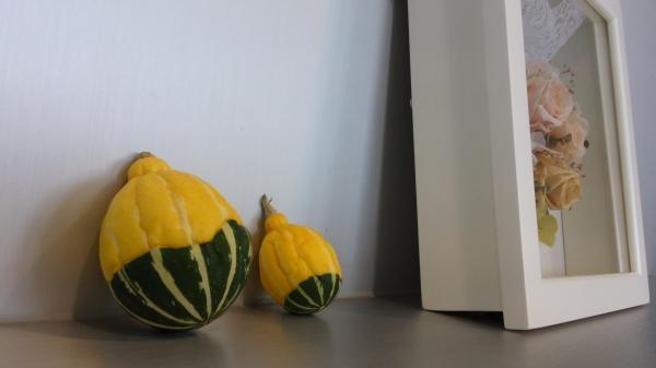 かぼちゃひからび2