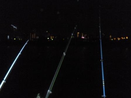 多摩川な夜