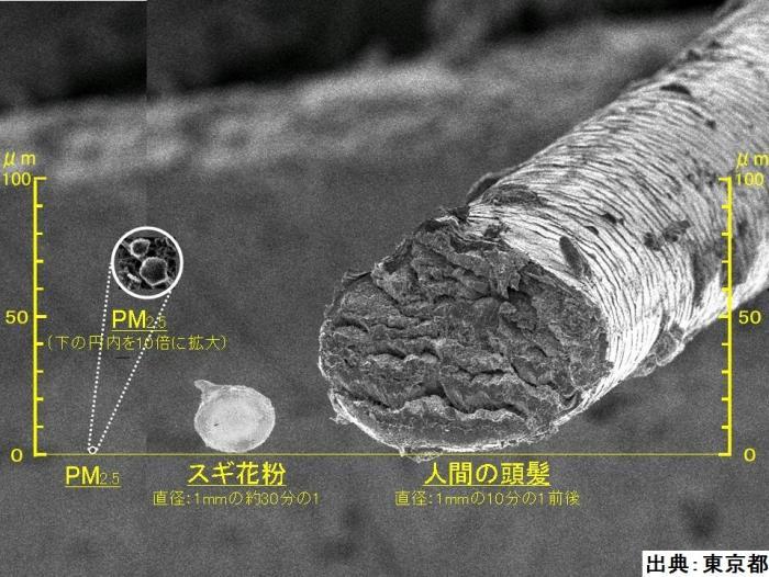 PM25-1.jpg